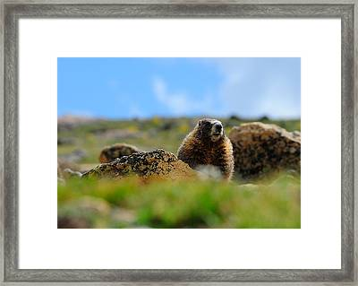 Fort Marmot Framed Print