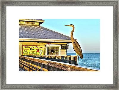 Fort Myers Beach Bird On Pier Framed Print