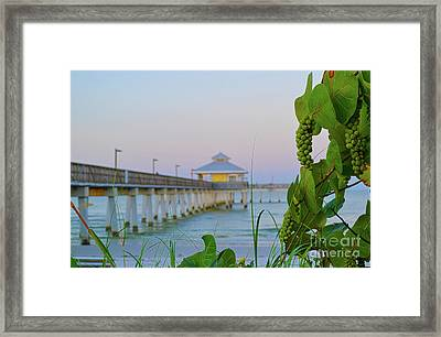 Framed Print featuring the photograph Fort Myers Beach Pier by Timothy Lowry