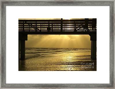Fort Myers Golden Sunset Framed Print