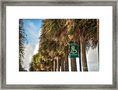 Fort Pierce Framed Print by Liesl Marelli