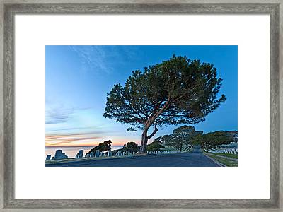 Fort Rosecrans National Cemetery Framed Print by Alexis Birkill