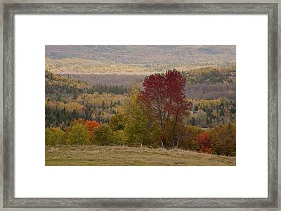 Framed Print featuring the photograph Fort Stewart Autumn Landscape by Jim Vance