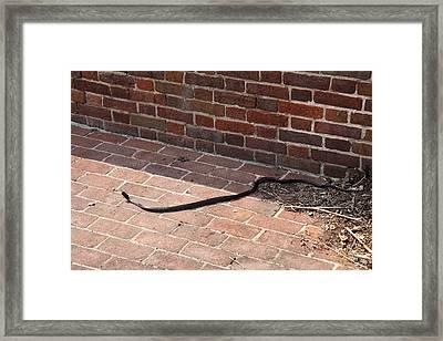 Fort Washington Park - 121238 Framed Print