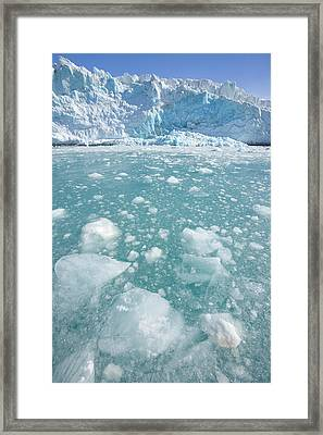 Fortuna Glacier Descending To Antarctic Framed Print