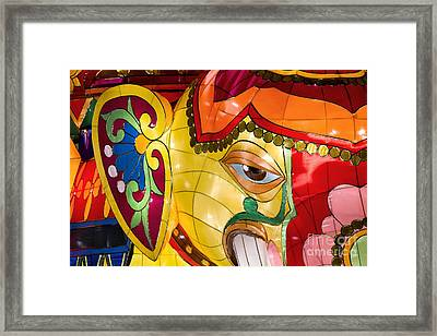 Fortune Framed Print by Tim Gainey