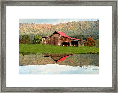 Fortunebarn Framed Print