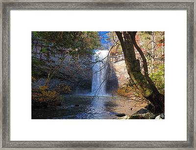 Foster Falls 1 Framed Print by Dale Wilson