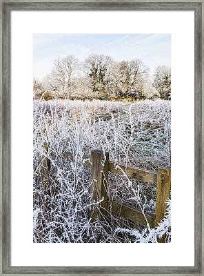 Fosty Scene Framed Print