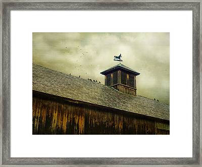 Foul Weathered Roost Framed Print