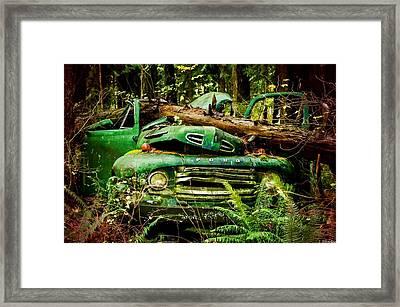 Found Off Road Dead Framed Print by Jordan Blackstone