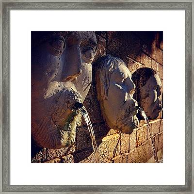 Fountain - Fl Framed Print
