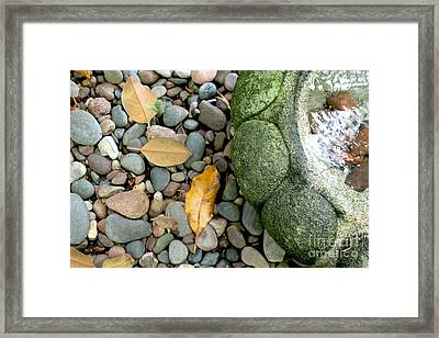 Fountain And Leaves Framed Print