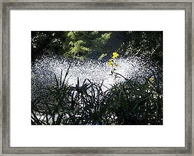 Fountain And Spring Flowers Framed Print