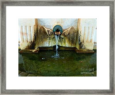 Fountain At Andersonville Framed Print by Sally Simon