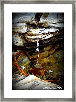 Framed Print featuring the photograph Fountain Drops by Tara Potts