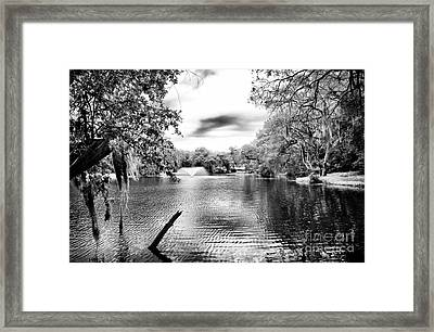 Fountain In The Pond Framed Print by John Rizzuto