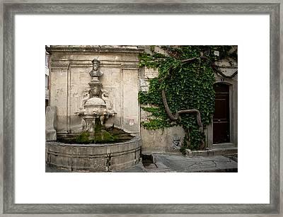 Fountain Nostradamus Framed Print by Oleg Koryagin