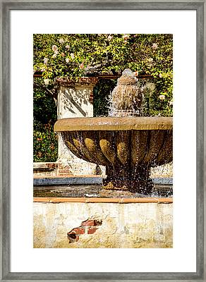 Framed Print featuring the photograph Fountain Of Beauty by Peggy Hughes