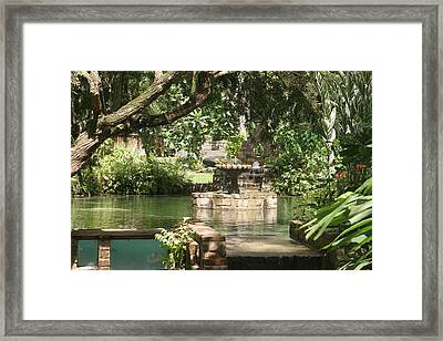 Fountain Of Youth Framed Print by Dervent Wiltshire