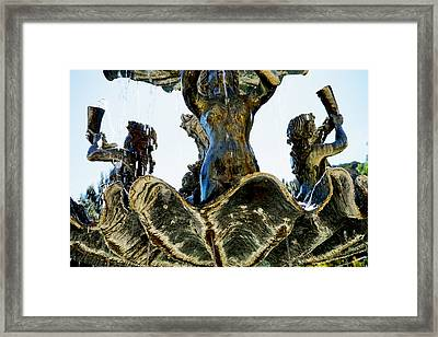 Fountain Of Youth II Framed Print