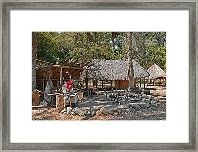 Fountain Of Youth - Living History Framed Print by Christine Till