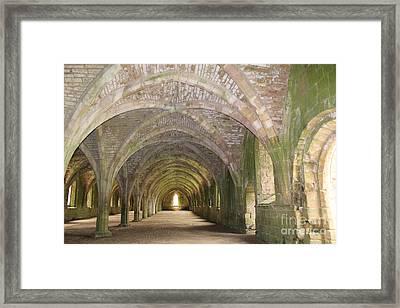 Fountains Abbey Cellarium  Framed Print by David Grant