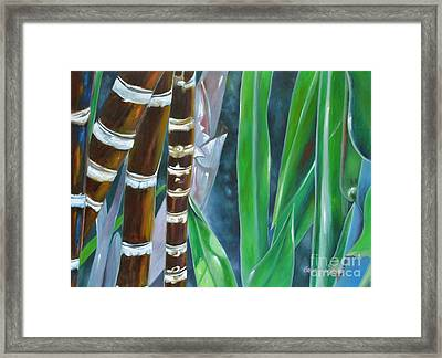 Four Canes For Green Framed Print