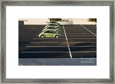 Four Green Beetles Framed Print