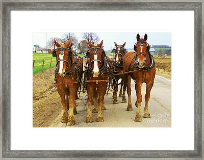 Four Horse Power Framed Print