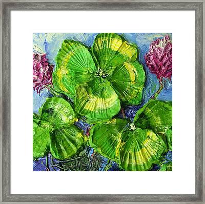 Four Leaf Clovers Framed Print by Paris Wyatt Llanso