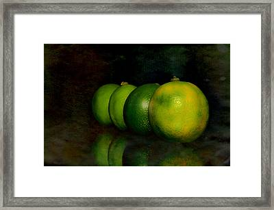 Four Limes Framed Print
