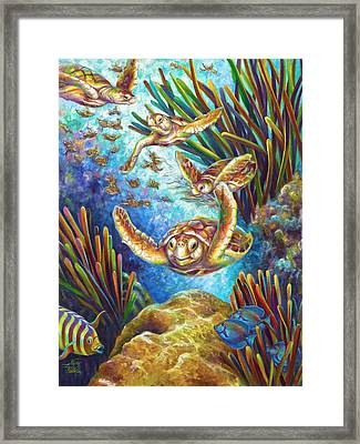 Four Loggerhead Turtles Framed Print by Nancy Tilles