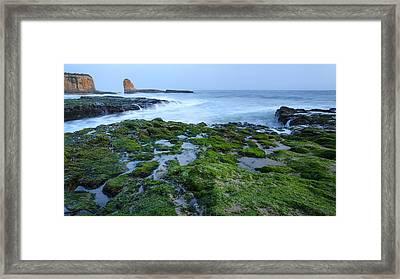 Four Mile Beach California Framed Print by Francesco Emanuele Carucci