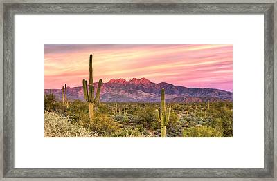 Four Peaks  Framed Print by Anthony Citro