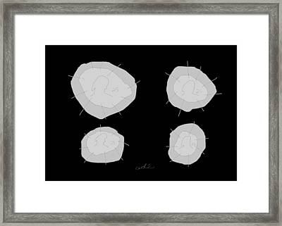 Four Quarters Framed Print by Anita Dale Livaditis