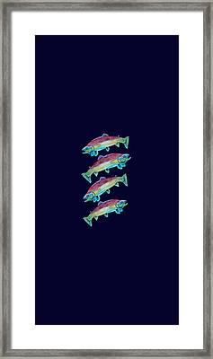 Four Rainbow Trout Framed Print