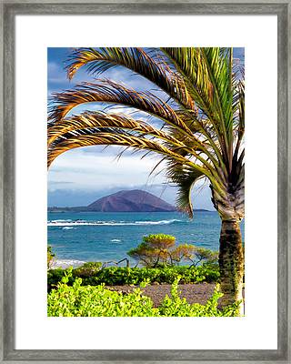 Four Seasons 110 Framed Print