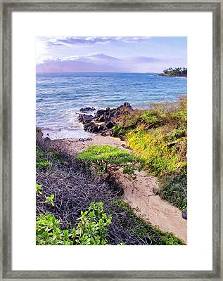 Four Seasons 125 Framed Print