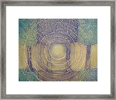 Four Seasons Framed Print by Steve  Hester