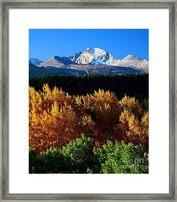Framed Print featuring the photograph Four Seasons by Steven Reed