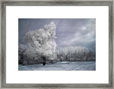 Four Seasons - Winter Framed Print by Akos Kozari