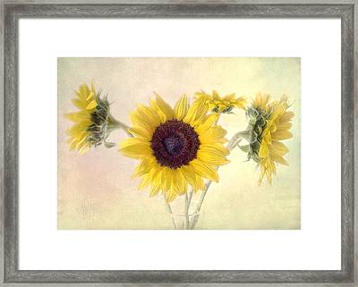 Framed Print featuring the photograph Hello Sunshine by Louise Kumpf