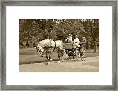 Four Wheel Cart Family Framed Print by Wayne Sheeler