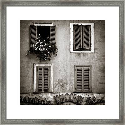 Four Windows Framed Print by Dave Bowman