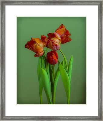 Fourlips Framed Print