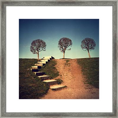 Fourteen Framed Print