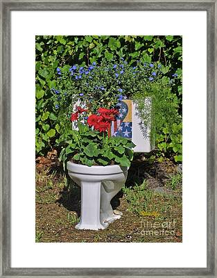 Fourth Of July Loo Framed Print