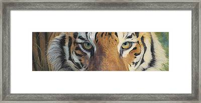 Forever Wild Framed Print by Lucie Bilodeau
