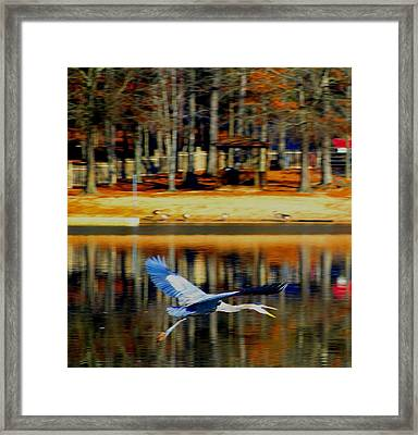 Fowl In Flight Framed Print by Cindy Croal